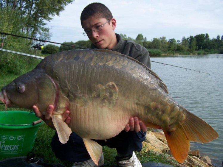 Saison 2007 (6)