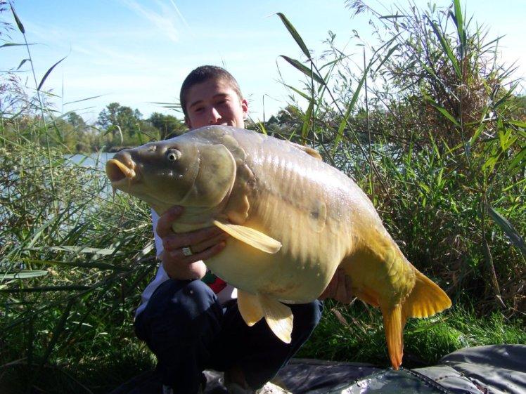 Saison 2008 (18)
