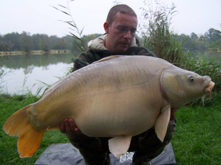 Saison 2008 (2)