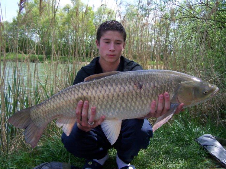 Saison 2008 (34)